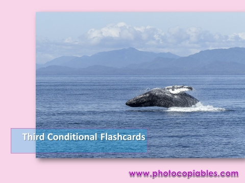 Third conditionals flashcards
