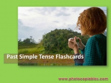 Past-Simple-WITH-CAPTIONS_flashcards